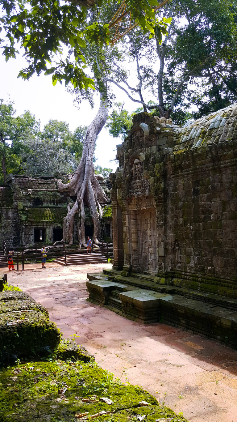 "Ta Prohm Temple Also Known As The ""Tomb Raider Temple"" In Siem Reap"
